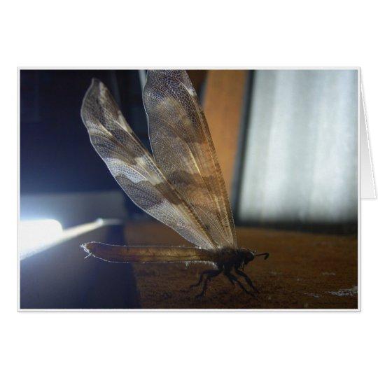 Von hinten beleuchtete Libelle Grußkarte