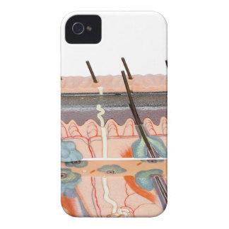 Vorbildliches menschliches Hautgewebe auf weißem iPhone 4 Case-Mate Hülle