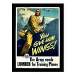 Vous lui donnez des ailes ! carte postale