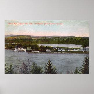 Vue aérienne du parc d'attractions de chênes posters
