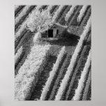 Vue noire et blanche de petite grange en pierre affiche