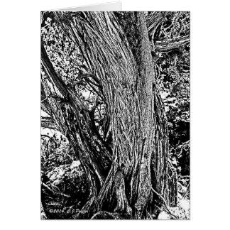 Wacholderbusch-Baum Karte