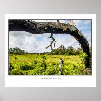 Wacholderbusch-Grasland-Wildnisgebiet Poster