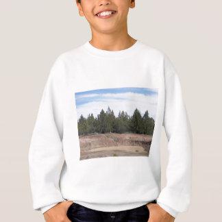 Wacholderbüsche Sweatshirt