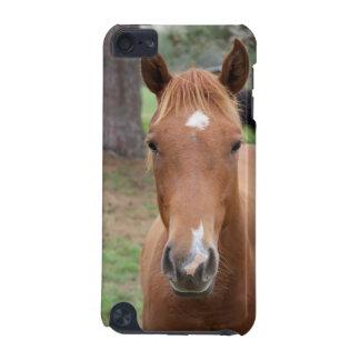 Wachsame Brown-Pferdenahaufnahme iPod Touch 5G Hülle