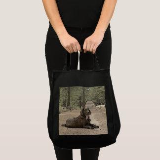 Wachsamer Schokoladen-Labrador auf einer Waldspur Tragetasche