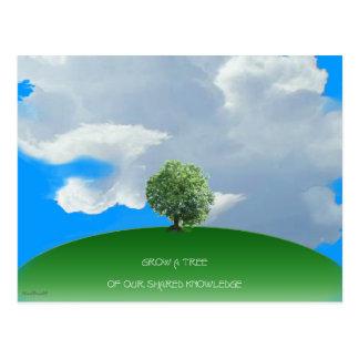 Wachsen Sie Wissens-Baum Postkarte