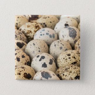 Wachtel-Eier Quadratischer Button 5,1 Cm