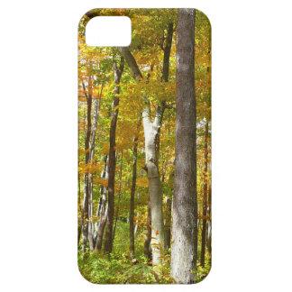 Wald des Gelbs verlässt Herbst-Natur-Fotografie iPhone 5 Etuis