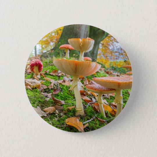 Waldboden mit Fliegenblätterpilzen und -Blätter im Runder Button 5,7 Cm