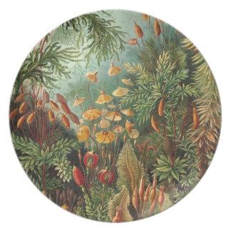 Waldflora Melaminteller