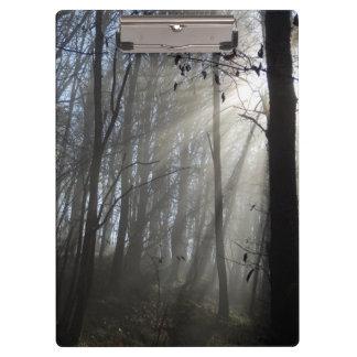 Waldmorgen-Nebel-Klemmbrett