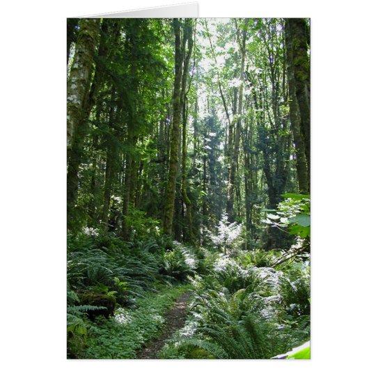 Waldweg Grußkarte