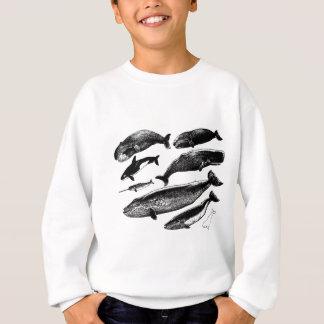Wale Sweatshirt