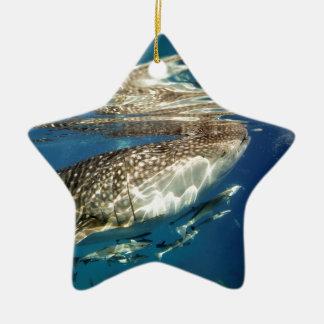 Walhai- und Remorafische Keramik Ornament
