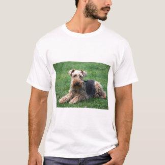 Waliser-TerrierhundeunisexT - Shirt, Geschenkidee T-Shirt