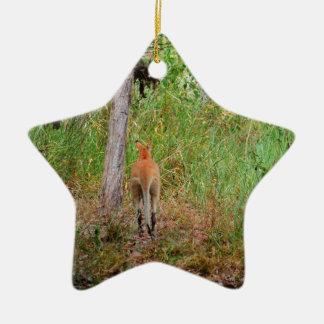 WALLABY LÄNDLICHES QUEENSLAND AUSTRALIEN KERAMIK Stern-Ornament