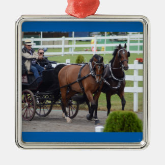 Walnuss-Hügel Mittwoch 2015 Quadratisches Silberfarbenes Ornament