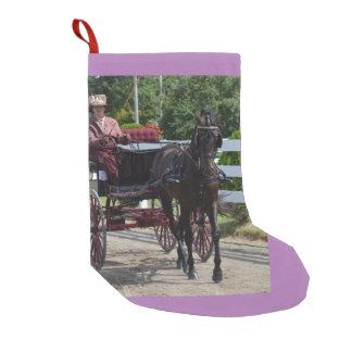 Walnuss-Hügel-Wagen, der Show 2015 fährt Kleine Weihnachtsstrümpfe