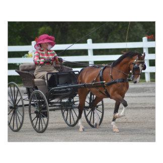 Walnusshügelwagen, der Pferdeshow fährt Fotodruck