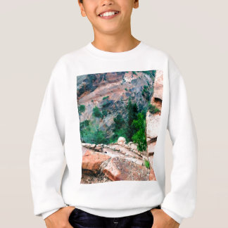 Walters Wiggles Zion Nationalpark Utah Sweatshirt