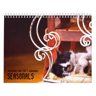 Wandkalender der Schlafenkatzen 2017