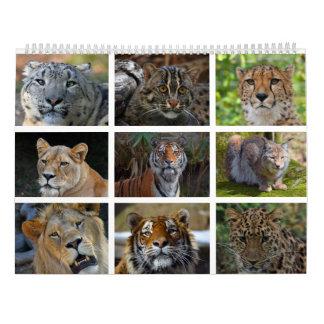 Wandkalender mit Fotos der wilden Katzen