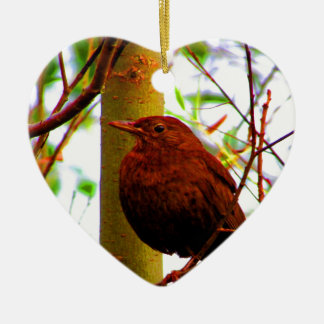 Warten Sie Sie weibliche Vogelhaustiere der Keramik Ornament