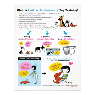 Was Position Reinf ist. Hundetraining? FLYER