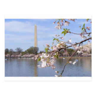 Washington-Monument-schöne Geschenke Postkarte
