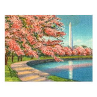 Washington Postkarte