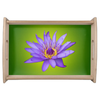Wasser-Lilien-Blumen-Teich-lila Wasser-Wasserblüte Serviertabletts