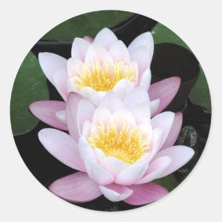 Wasser-Lilien-runder Aufkleber