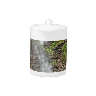 Wasserfall des Finsterbach in dem Ossiacher See