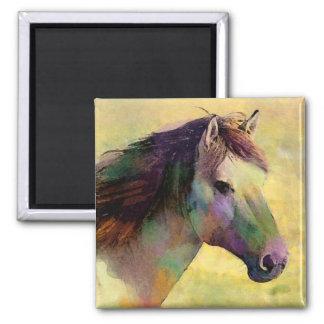 Wasserfarbe-Pferdemagnet Quadratischer Magnet