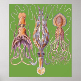 Wasserkunst-Kraken Poster