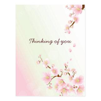 Weich rosa und weiße Kirschblüte Postkarte