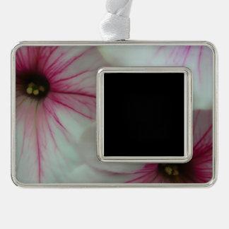 Weiche und empfindliche rosa Petunien Rahmen-Ornament Silber