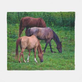 Weiden lassen der PferdeFleece-Decke Fleecedecke