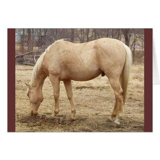 Weiden lassen des Palomino-Pferds Karte