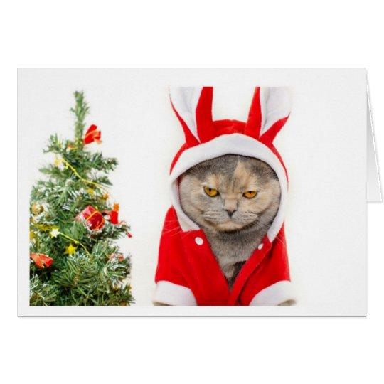 Weihnachten - Katze Grußkarte