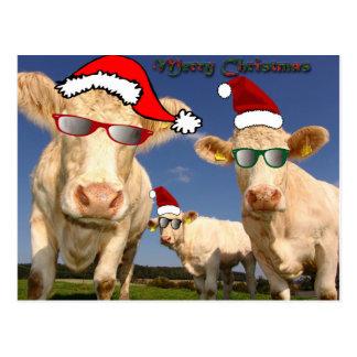 Weihnachten schüchtert Postkarte ein