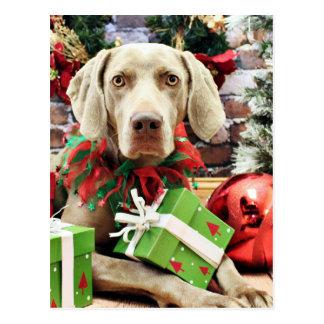 Weihnachten - Weimaraner - Lucy Postkarte