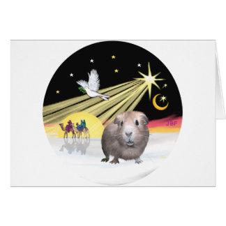 Weihnachtenc$taube-Guinea Schwein 2 Karte