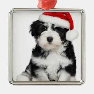 WeihnachtenHavanese Hündchen Silbernes Ornament