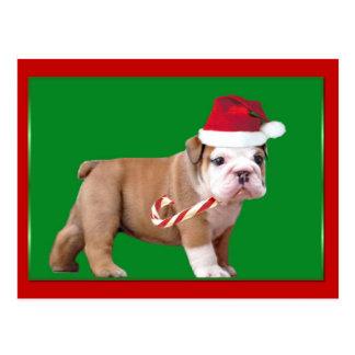 Weihnachtsbulldoggenwelpe Postkarte