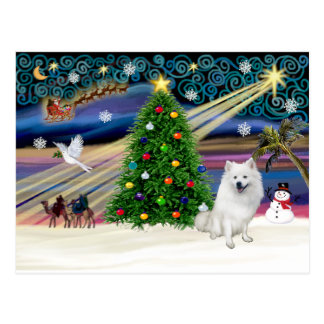 Weihnachtsc$magie-amerikanischer Eskimohund Postkarte