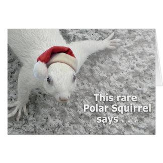 Weihnachtseichhörnchen Karte