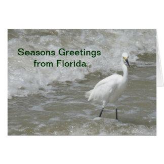Weihnachtskarte - Frohe Festtage von Florida - Karte