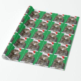 Weihnachtskatzehumbug-Foto mit Weihnachtsmannmütze Geschenkpapier